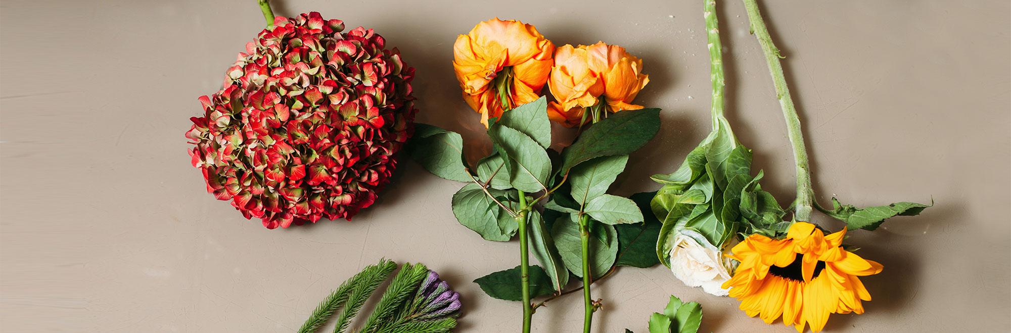 しまりすパーラー - 子どものための花アトリエ