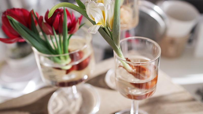 高さのある花瓶で球根を活ける